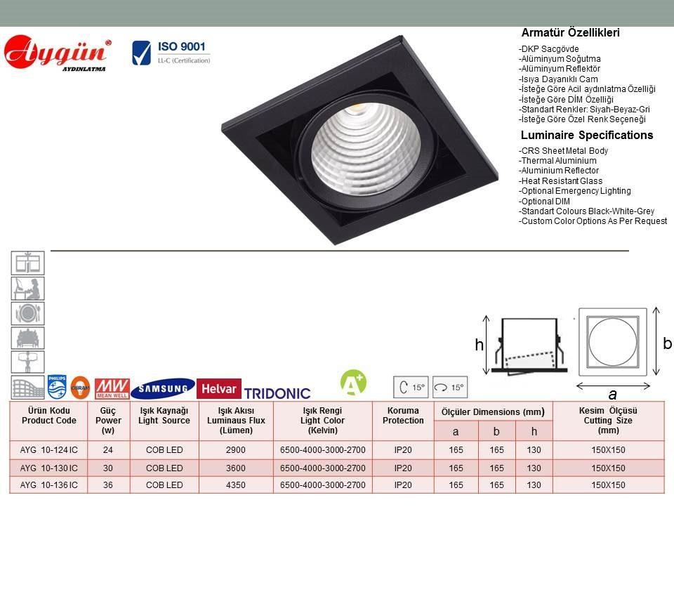 AYG 10-124 IC
